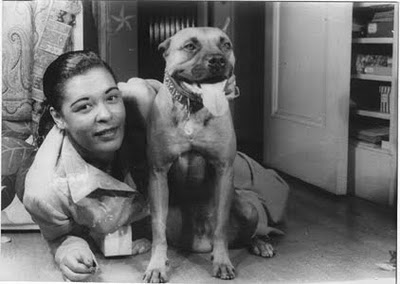 Pitbull History Gallery Billie Holiday With Mister